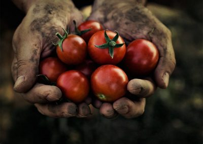 Food and Modern Slavery: What is behind your food?