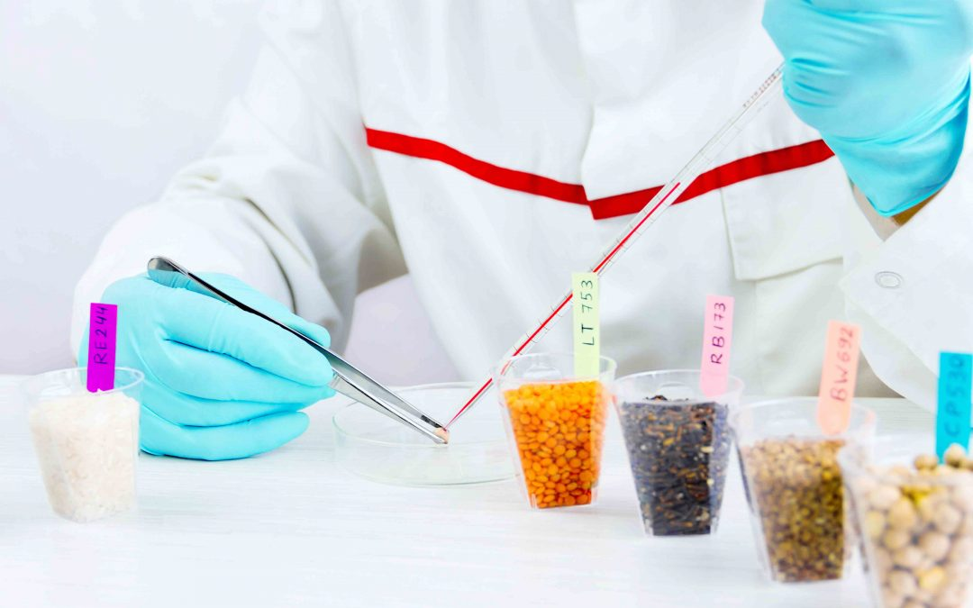 Austria's consumers do not want food from new genetic engineering