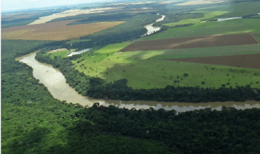 Does the Brazilian soybean production increase pose a threat on the Amazon rainforest?
