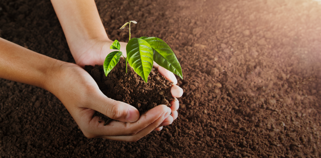 The ProTerra Standard and long-term sustainability