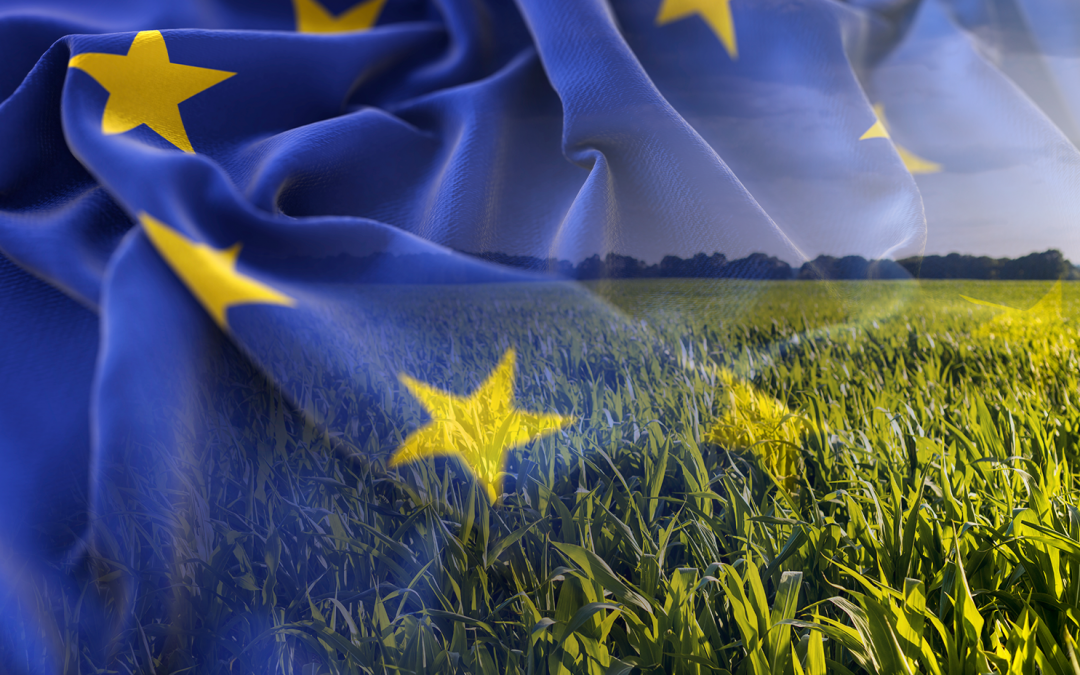 On the track of bringing down the European Union footprint