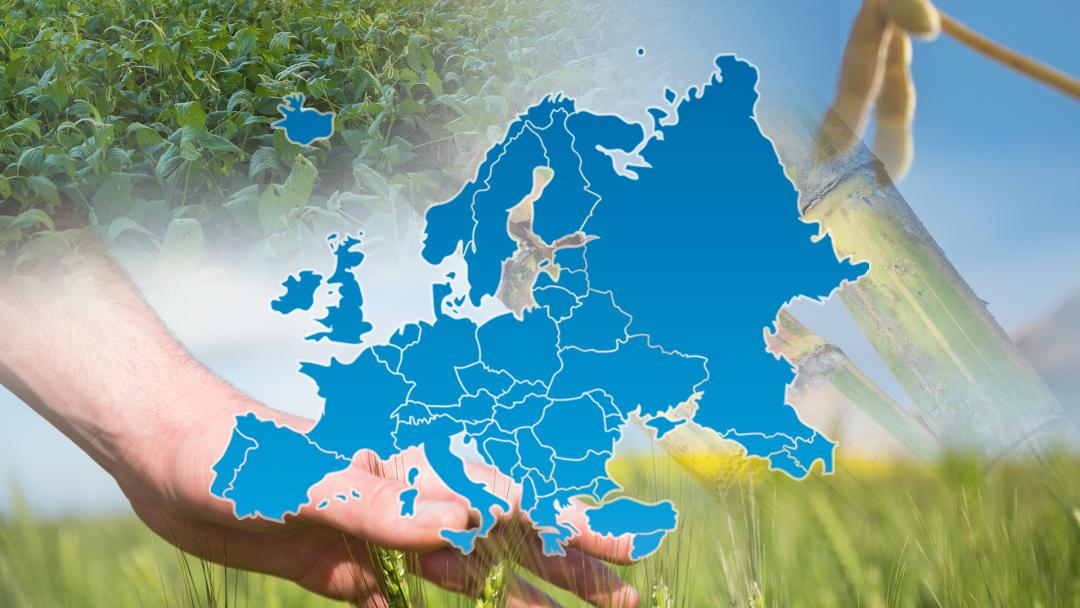 The ProTerra Standard – Interpretation for Europe