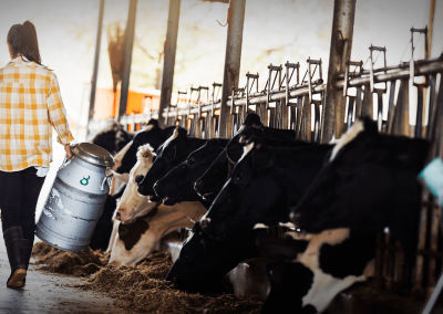 ProTerra and the German Forum for More Sustainable Protein Feed