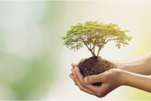 How future trends can help us to reduce environmental impact?