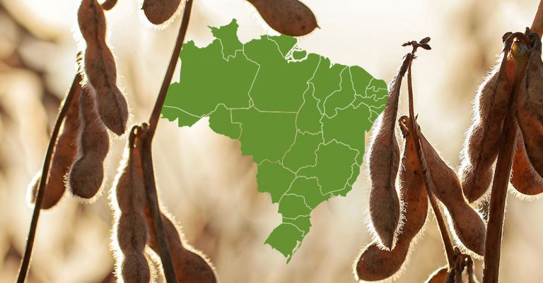 An initiative to achieve 100% percent deforestation-free supply chains from Brazil